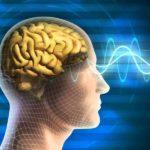 Что такое эйфорическая память?